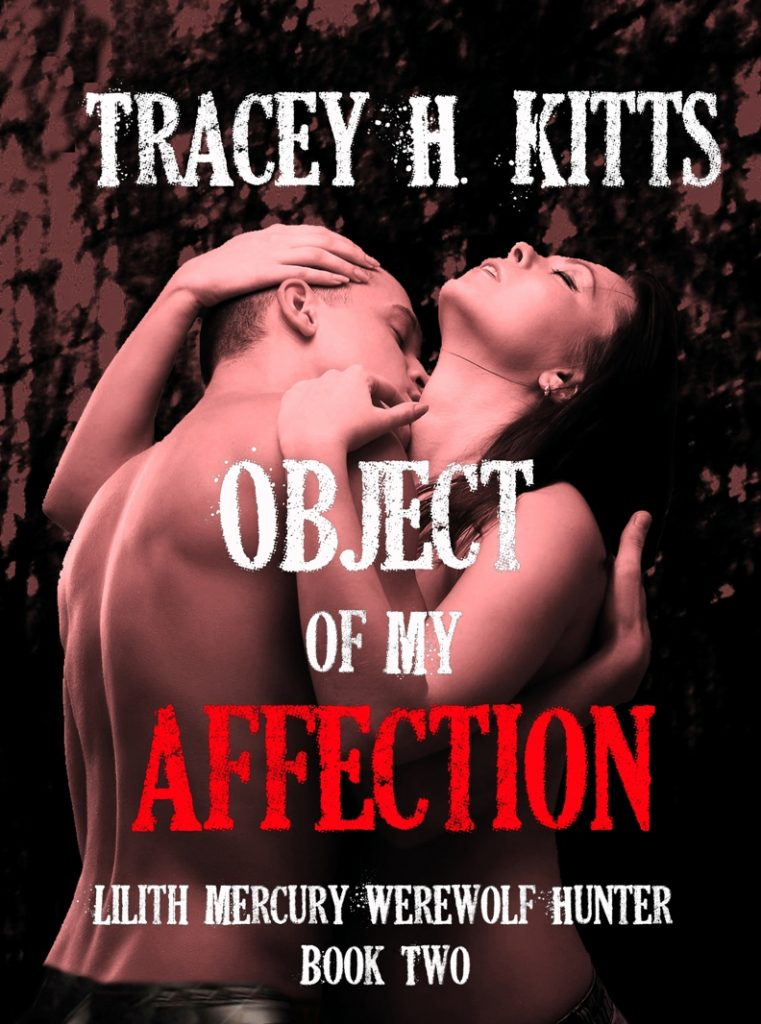 Book Cover: Object of My Affection